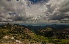 13,000 (FleetingEye) Tags: 000feet 13 2016 clouds color landscape mountains outside pine pinetree rocks scenic ski skislopes sky snowbird summer travel tree trees usa utah