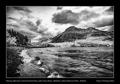 Stormy afternoon along Emerald Bay with Vimy Peak, Waterton Lakes National Park, Alberta (kgogrady) Tags: afternoon emeraldbay infrared landscape summer watertonlakesnationalpark waterton alberta canada blackandwhite canadianlandscapes blackwhite canadianrockies albertalakes cans2s 2016 bw albertalandscapes canadianmountains canadiannationalparks ab canadianlakes canadianrockieslanscape driftwood fujinon fujifilmxpro1 fujifilm westerncanada trees windy xpro1 xf14mmf28r mountains stormy vimypeak southernalberta waves upperwatertonlake