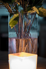 Candle Lit Vase (rickyjfjones) Tags: vase flowers wildflowers candle candlelit water