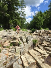 IMG_5857 (cayuill) Tags: jacksonfalls 2016 sophie nh