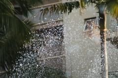 Rio20016-Iguazu-128 (Coxio) Tags: iguazu hotel exportok brazil paran fozdoiguau paran fozdoiguau