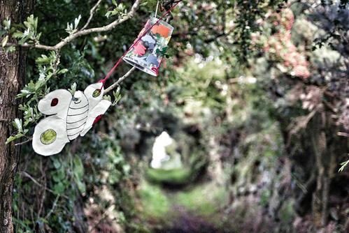 #Ireland #pocket_ireland ##discoverireland #discoverni #wicca #SonyAlphasClub #sonya77ii #SonyImages #ballynoe