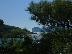 P1100675 (ezioman) Tags: alghero sardinia italy calabramassa seaside mediterranean sea coast portoconte