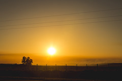 Cae el sol en el campo... (Pablin79) Tags: field sky landscape sunset color nature sun light clouds outdoor gold silhouette evening horizon fence shadows dawn outdoors dusk wires tones afternoon argentina silhouettes golden hour misiones posadas noperson
