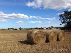 Early autumnal view across the fields - Stannington Northumberland England (WanderingPhotosPJB) Tags: england northumberland stannington earlyautumn wheatfields harvest bales rolls img