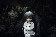 Silent (haru88) Tags: dd dds volks doll dollfie dollfiedream