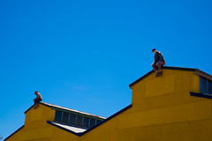 Two Alone: Rooftop Dreaming (Pauls-Pictures) Tags: street city blue roof two sky urban color colour rooftop lens photography couple factory fuji image suburban top portait suburbia australia kind adelaide fujifilm suburb standard manequin prospect compactcamera two