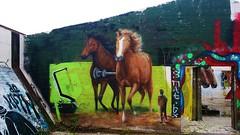 Cee Pil / Dok Noord - 15 november 2014 (Ferdinand 'Ferre' Feys) Tags: streetart graffiti belgium belgique belgi urbanart graff ghent gent gand graffitiart artdelarue urbanarte canvas9000 ceepil