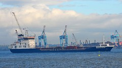 Ships of the Mersey - Besiktas Iceland (sab89) Tags: 2 port liverpool docks iceland thea ship close ships birkenhead oil shipping quarters mersey tanker chemical wirral besiktas seaforth