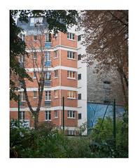 Untitled (Nandhor) Tags: blue autumn paris building automne bleu immeuble sanguine appartments appartements 7mearrondissement
