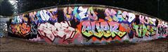 Various... (Alex Ellison) Tags: urban graffiti mood boobs rip mint panoramic halloffame graff ever trellicktower hof westlondon zomby wnc dds joak spoe dfn dowt dowta neboe
