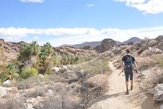 Brad hiking Andreas Canyon (raphaelmazor) Tags: california palmsprings riversidecounty indiancanyons andreascanyon aguacalientetriballands