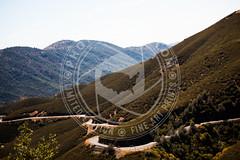 CALIFORNIA-910