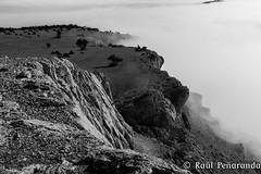 Subida al Pico de Navas 2014 (Ral de la Montaa) Tags: pico burgos subida can navas hontoriadelpinar caondelriolobos navasdelpinar picodenavas