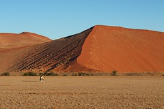Lonely oryx (marko.erman) Tags: morning orange landscape early rocks desert dunes paysage namibia oryx dsert sossusvlei namib