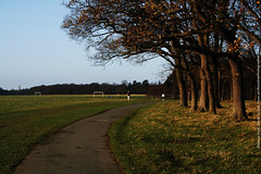 2014-12-19 14.36.05 (The diary of Blue Shoes!) Tags: park trees ireland houses winter sky dublin irish sun streets cold green nature water grass bicycle out outside outdoors europe december earth streetphotography phoenixpark