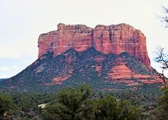 Sedona, AZ (Kevin Shriner) Tags: trees arizona mountain color sedona redrocks