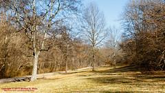 Warner Parks Walkabout - January 17, 2014 (mikerhicks) Tags: winter usa geotagged unitedstates nashville hiking tennessee percywarnerpark warnerparks vaughnsgap canon7dmkii iroquoismeadows sigma18250mmf3563dcmacrooshsm geo:lat=3606336167 geo:lon=8687949833