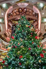 Looking Up the Christmas Centrum on Vision of the Seas (jeff_a_goldberg) Tags: christmas christmastree royalcaribbean centrum visionoftheseas