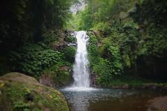 Gitgit Waterfalls, Bali