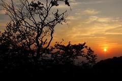 (Jelena1) Tags: sunset sky naturaleza sun tree sol nature silhouette clouds canon soleil sonnenuntergang sundown serbia natur himmel wolken ciel cielo nubes rbol silueta nuages sonne arbre ocaso baum trd zalazaksunca solnedgng srbija nebo moln coucherdusoleil drvo solen silhuett oblaci sunce canonefs1855mmf3556is canon600d westernserbia zapadnasrbija canoneos600d