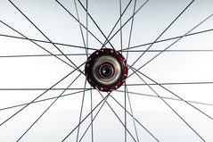Velocity_Dually_Profile_Rear-Detail (Cycle Monkey USA) Tags: trail riding mtb trailriding customwheels profileracing velocityusa
