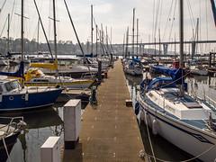 Port Edgar, South Queensferry (mister_wolf) Tags: bridge marina boats scotland unitedkingdom bridges queensferry southqueensferry westlothian portedgar