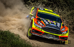 Martin Prokop - Ford Fiesta WRC (Luca eskimo) Tags: road sardegna cars ford car sport race speed colorful sardinia fiesta rally racing dirty dirt wrc dust terra gara polvere autolavaggiobatman