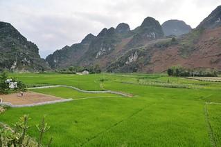 tam son - dong van - vietnam 23