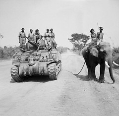 The British commander and Indian crew of a Sherman tank of the 9th Royal Deccan Horse, 255th Indian Tank Brigade, encounter a newly liberated elephant on the road to Meiktila, 29 March 1945 [800x781] #HistoryPorn #history #retro http://ift.tt/1TEwfmU (Histolines) Tags: road horse elephant history march tank indian royal retro crew timeline british 29 9th 1945 sherman newly commander encounter brigade the deccan liberated meiktila vinatage historyporn 255th histolines 800x781 httpifttt1tewfmu