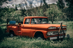 Old But Capable (Pedalhead'71) Tags: old orange abandoned oregon truck fossil us unitedstates