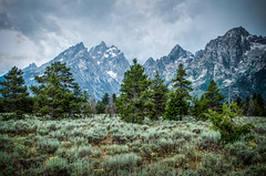 The Grand Tetons (donnieking1811) Tags: mountains skyline clouds landscape outdoors grand wyoming tetons