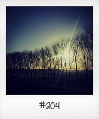 """#DailyPolaroid of 19-4-16 #204 • <a style=""""font-size:0.8em;"""" href=""""http://www.flickr.com/photos/47939785@N05/27524752212/"""" target=""""_blank"""">View on Flickr</a>"""