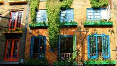 Neal's Yard (raffaella.rinaldi) Tags: plant london window canon colorful balcony homeless coventgarden sunnyday nealsyard homesickness natureandbuildings brexit mydearlondon