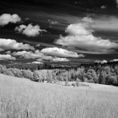 Fluffy ir-clouds (Jonas.Nilsson) Tags: blackandwhite bw 6x6 film clouds rollei analog mediumformat square ir 120film infrared mf rodinal xenar filmphotography rolleicordiv filmisnotdead ir400 iamfilm rolleiinfrarot believeinfilm