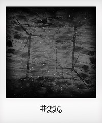 """#DailyPolaroid of 11-5-16 #226 • <a style=""""font-size:0.8em;"""" href=""""http://www.flickr.com/photos/47939785@N05/28113674695/"""" target=""""_blank"""">View on Flickr</a>"""