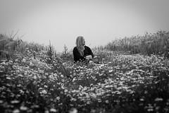 Hope (_anke_) Tags: flowers portrait blackandwhite bw nature monochrome field digital hope 50mm darkness quote dream meadow philosophy wildflowers kamille philosopher 2016 primelens aristoteles hopeisawakingdream chamomilla