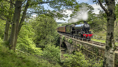 Chiru at Water Ark - June 2014 (Katybun of Beverley) Tags: bridge railway loco arches steam northyorkshire steamtrain goathland nymr chiru northyorkshiremoors 61034 waterark