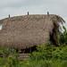 Casas de madeira e teto de palha