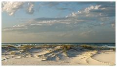 Summer sand dune (pbaddz) Tags: australia goldcoast kirra