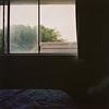 (supacrush) Tags: film window square kodak availablelight melbourne ishootfilm hasselblad portra msm windowlight melbournesilvermine