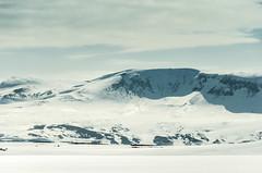 Mvatnsrfi (Jaime Prez) Tags: snow mountains iceland islandia nieve sland montaas