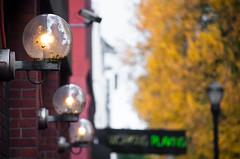 Globe Lights Playing Neon (Orbmiser) Tags: autumn fall sign oregon portland lights globe nikon neon sidewalk d90 55200vr