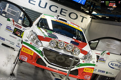 Monza Rally Show 2014 (ghigu 74) Tags: show italy sport nikon rally peugeot monza italiani 208 t16 2014 r5 campioni ucci ussi d700 andreucci andreussi