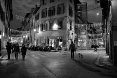 Chiusa al traffico (Frnz) Tags: italia firenze toscana santospirito frnz