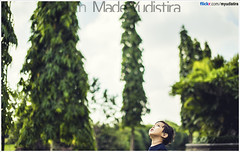 Trees Become Tall Because They Grow (Bali Freelance Photographer) Tags: life people bali nature beauty canon indonesia eos photo foto stock culture daily cultural alam budaya balinese culturalevent myudistira madeyudistira myudistiraphotography