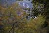 Plitvice Lakes National Park, Croatia (szefi) Tags: travel autumn fall nature landscape waterfall nationalpark europe sigma roadtrip adventure plitvice lorien 30mm plitvicelakes sigma3014 3014