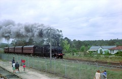 1978-07437 (archcreative) Tags: nsw 1970s steamtrain thirlmere 3203