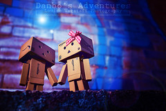 Night Life (loulovesdanbo) Tags: stilllife cute modern night toy photography lights colorful character flare expressive nightlife adventures danbo danbos danboard danboru danbomini danbophotography