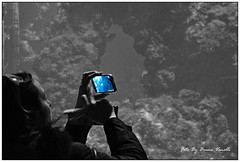 "smartphone (Photo: bruno.vanelli ""the amateur naturalist"" on Flickr)"